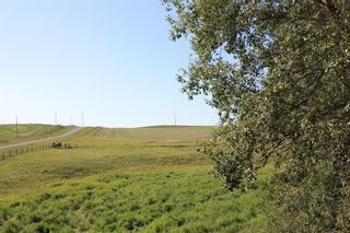 Photo 33: For Sale: 4410 Rge Rd 295, Rural Pincher Creek No. 9, M.D. of, T0K 1W0 - A1144475