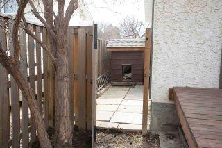 Photo 35: 8919 187 Street in Edmonton: Zone 20 House for sale : MLS®# E4246639