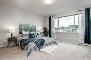 Photo 34: 57 CRANARCH Place SE in Calgary: Cranston Detached for sale : MLS®# A1112284