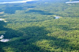 Photo 9: 16536 Rainy Lake in Fort Frances: Vacant Land for sale : MLS®# TB212374