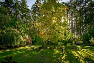 Photo 8: 677 Woodcreek Dr in NORTH SAANICH: NS Deep Cove House for sale (North Saanich)  : MLS®# 799765