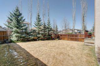Photo 49: 133 CRANRIDGE Heights SE in Calgary: Cranston Detached for sale : MLS®# A1091350