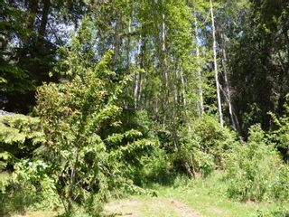 Photo 13: Lot 7 Pearse Island in : Isl Small Islands (North Island Area) Land for sale (Islands)  : MLS®# 862466