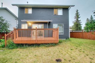 Photo 45: 144 Martinwood Court NE in Calgary: Martindale Detached for sale : MLS®# A1126396