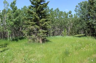 Photo 12: 25255 Bearspaw Place in Rural Rocky View County: Rural Rocky View MD Land for sale : MLS®# A1013795