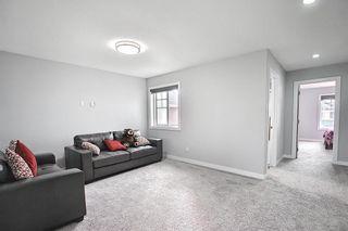 Photo 13: 3905 ROBINS Crescent in Edmonton: Zone 59 House for sale : MLS®# E4264867