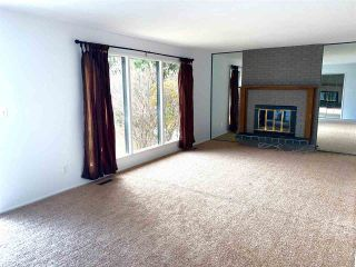 Photo 15: 24024 HWY 37: Rural Sturgeon County House for sale : MLS®# E4219082