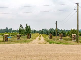 Photo 7: 50362 RR 281: Rural Leduc County Rural Land/Vacant Lot for sale : MLS®# E4255480