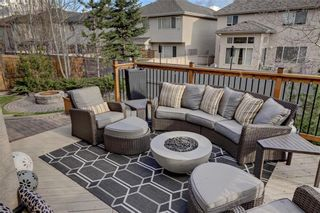 Photo 45: 118 CHAPALA Close SE in Calgary: Chaparral Detached for sale : MLS®# C4255921