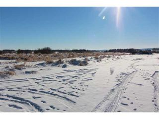 Photo 5: 34165 Township Road 240A in Rural Rocky View County: Rural Rocky View MD Detached for sale : MLS®# A1070549