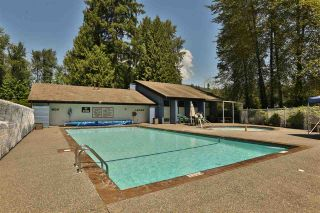 Photo 11: 1250 RIVER DRIVE in COQUITLAM: River Springs House for sale (Coquitlam)  : MLS®# R2402464