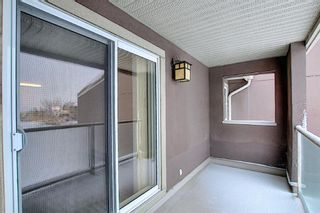Photo 14: 2031 Edenwold Heights NW in Calgary: Edgemont Apartment for sale : MLS®# A1066741