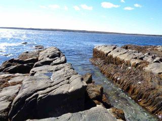 Photo 5: Lot SANDY POINT Road in Sandy Point: 407-Shelburne County Vacant Land for sale (South Shore)  : MLS®# 201509498
