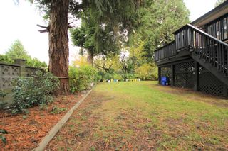 Photo 24:  in Vancouver: Oakridge VW House for rent (Vancouver West)  : MLS®# AR061A