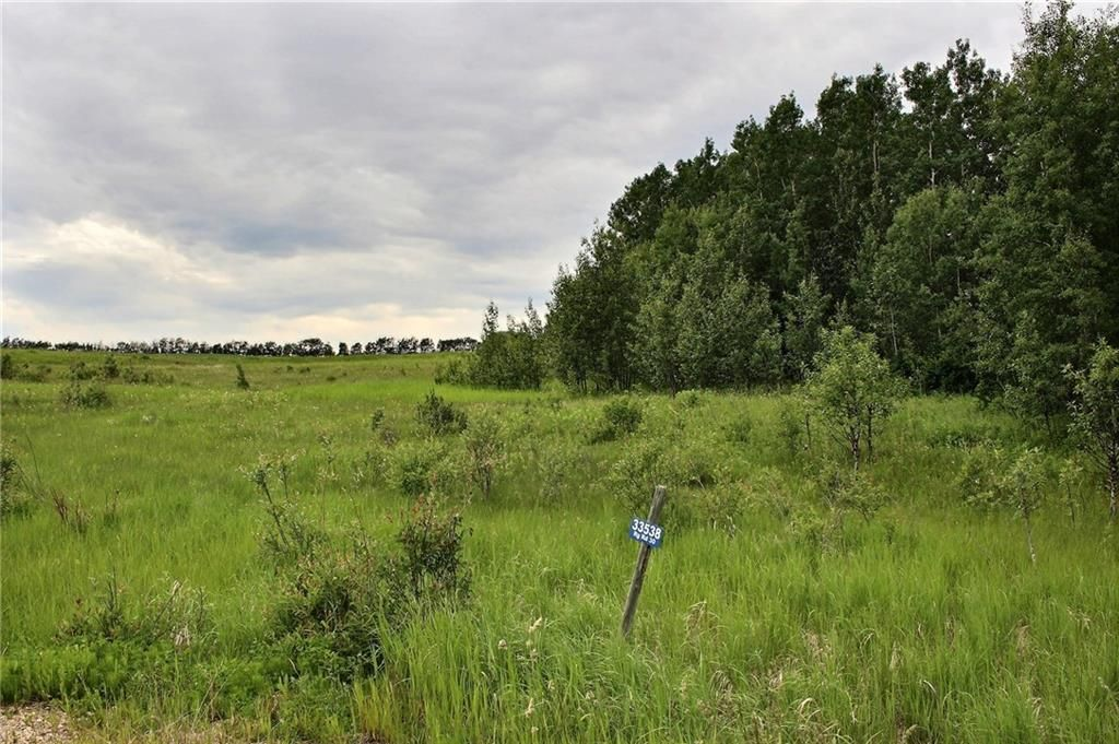 Main Photo: 33538 Rg RD 30: Rural Mountain View County Land for sale : MLS®# C4305650