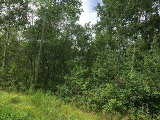 Photo 2: 24 Moon Shadow Road: Lake Manitoba Narrows Residential for sale (R19)  : MLS®# 202109658