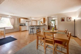 Photo 9: 63 MT Apex Green SE in Calgary: McKenzie Lake Detached for sale : MLS®# A1009034