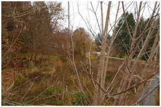 Photo 16: 480 Southeast 30 Street in Salmon Arm: SE Vacant Land for sale : MLS®# 10171761