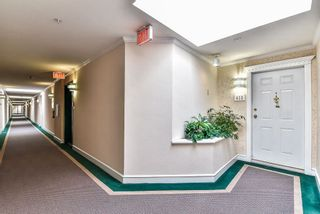 "Photo 17: 413 32044 OLD YALE Road in Abbotsford: Abbotsford West Condo for sale in ""GREEN GABLES"" : MLS®# R2242235"