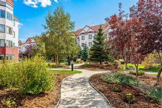 Photo 31: 401 20 Royal Oak Plaza NW in Calgary: Royal Oak Apartment for sale : MLS®# A1147248