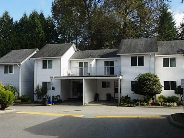 Main Photo: # 7 12070 207A ST in Maple Ridge: Northwest Maple Ridge Condo for sale : MLS®# V1088196
