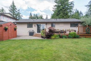 Photo 14: 20009 46A AVENUE in Langley: Langley City House for sale : MLS®# R2177503