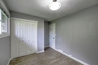 Photo 22: 4604 Maryvale Drive NE in Calgary: Marlborough Detached for sale : MLS®# A1090414