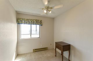 """Photo 13: 31 11900 228 Street in Maple Ridge: East Central Condo for sale in """"MOONLIGHT GROVE"""" : MLS®# R2562684"""