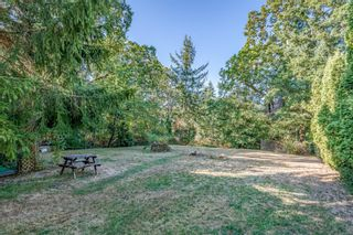 Photo 6: 4649 McQuillan Rd in : CV Courtenay East Manufactured Home for sale (Comox Valley)  : MLS®# 885887