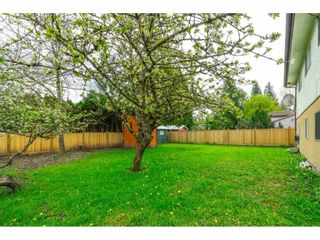 Photo 26: 5000 203 Street in Langley: Langley City House for sale : MLS®# R2572132