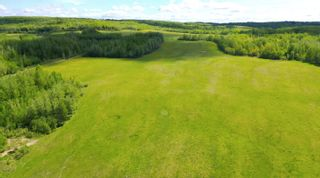 Photo 11: 13934 PACKHAM FRONTAGE Road: Charlie Lake Agri-Business for sale (Fort St. John (Zone 60))  : MLS®# C8039465