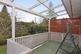 Photo 18: 34519 ASCOTT Avenue in Abbotsford: Abbotsford East House for sale : MLS®# R2346627