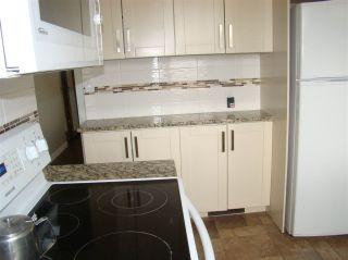 Photo 35: 13507 84A Street in Edmonton: Zone 02 House for sale : MLS®# E4227401