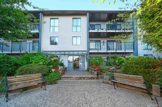 """Main Photo: 215 9952 149 Street in Surrey: Guildford Condo for sale in """"Tall Timbers"""" (North Surrey)  : MLS®# R2613333"""