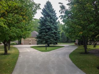 Photo 4: 141 Bluegrass Road in RM Springfield: Single Family Detached for sale (R04)  : MLS®# 1905198