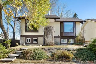 Photo 1: 816 Whitehill Way NE in Calgary: Whitehorn Detached for sale : MLS®# A1154099
