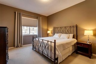 Photo 15: 219 Springbluff Heights SW in Calgary: Springbank Hill Detached for sale : MLS®# A1047010