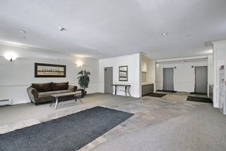 Photo 5: 110 838 19 Avenue SW in Calgary: Lower Mount Royal Apartment for sale : MLS®# A1073517