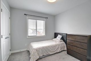 Photo 27: 143 Nolanhurst Rise NW in Calgary: Nolan Hill Detached for sale : MLS®# A1110473