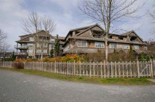 """Photo 1: 311 250 SALTER Street in New Westminster: Queensborough Condo for sale in """"PADDLERS LANDING"""" : MLS®# R2445205"""