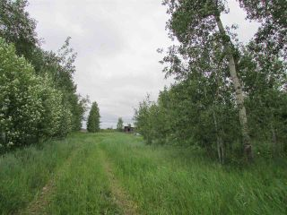 Photo 6: 11887 242 Road in Fort St. John: Fort St. John - Rural W 100th House for sale (Fort St. John (Zone 60))  : MLS®# R2384209