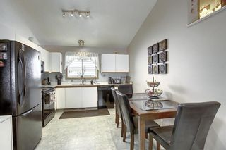Photo 4: 305 Martinwood Place NE in Calgary: Martindale Detached for sale : MLS®# A1038589