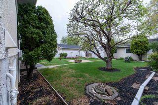 Photo 40: 7228 152A Avenue in Edmonton: Zone 02 House for sale : MLS®# E4245820