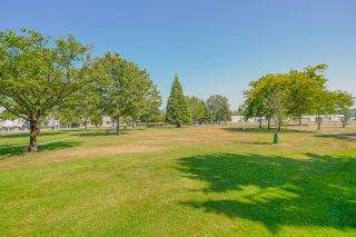 """Photo 20: 215 20448 PARK Avenue in Langley: Langley City Condo for sale in """"James Court"""" : MLS®# R2606212"""