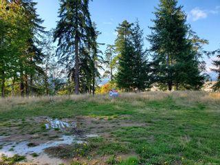 Photo 2: 3564 Parkview Cres in : PA Port Alberni Land for sale (Port Alberni)  : MLS®# 858615