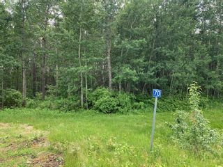 Photo 4: 47411 RR14: Rural Leduc County Rural Land/Vacant Lot for sale : MLS®# E4250921