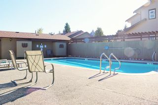 Photo 25: 7 7751 East Saanich Rd in Central Saanich: CS Saanichton Row/Townhouse for sale : MLS®# 854161