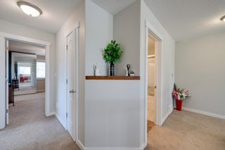 Photo 27: 1329 MALONE Place in Edmonton: Zone 14 House for sale : MLS®# E4247611
