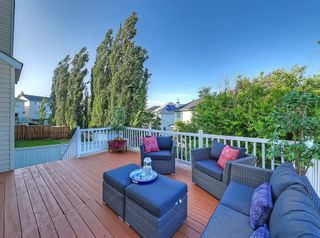 Photo 29: 741 Citadel Drive NW in Calgary: Citadel Detached for sale : MLS®# C4260865