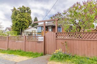 Photo 37: 583 Chestnut St in : Na Brechin Hill House for sale (Nanaimo)  : MLS®# 873676